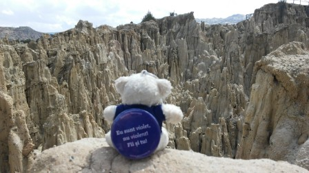 Traveling-with-teddies-interesting-facts-about-travelmore-live-travel-friends-Romie-Valle-de-la-muerte-La-Paz-Bolivia
