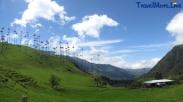 Valle de Cocora, Cocora Valley, Salento, Eje Cafetero, Colombia